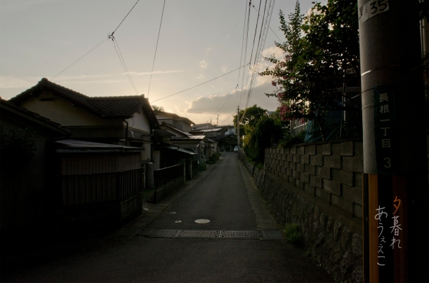 niso_y_004
